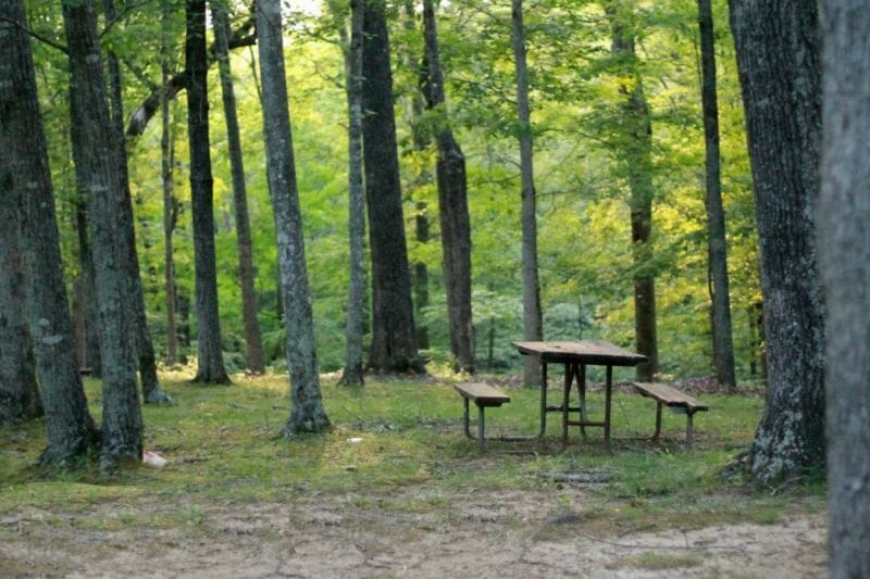 picnic-table-1920-grosssee