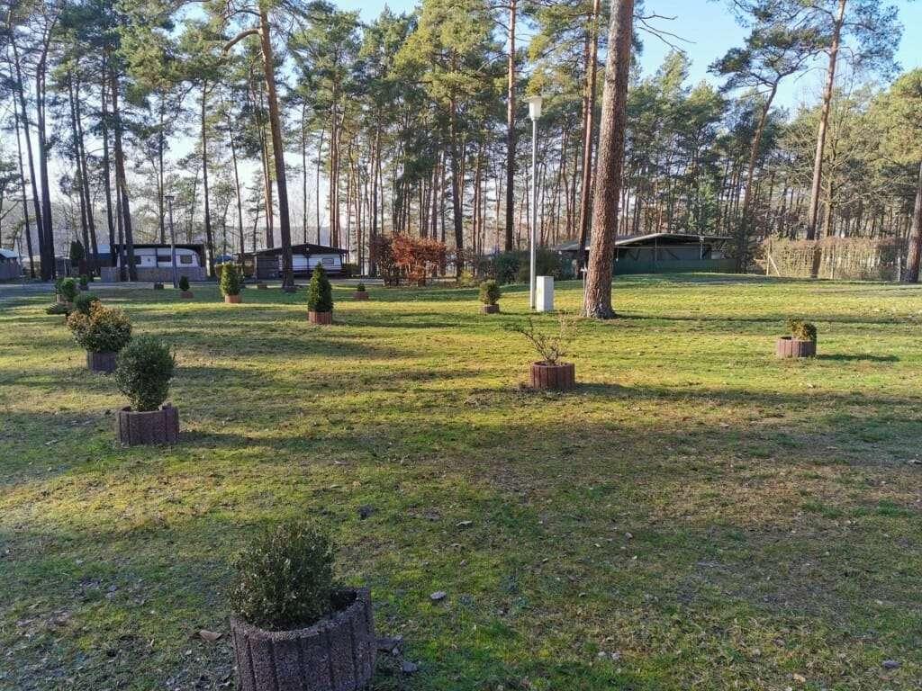 IMG_20200208_133300_Waldcamping_Großsee_WoWa_1824