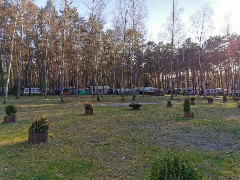Waldcamping_GrossSee_Standplatz_Blick_Dauercamper