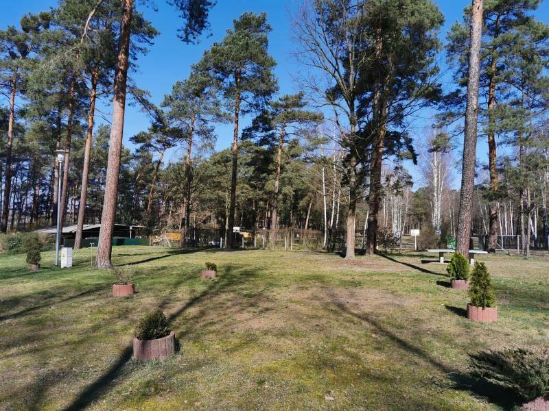 Waldcamping_GrossSee_Standplatz_WW03