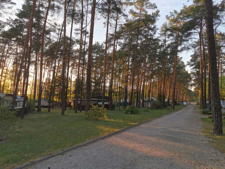Hauptweg auf Campingareal II
