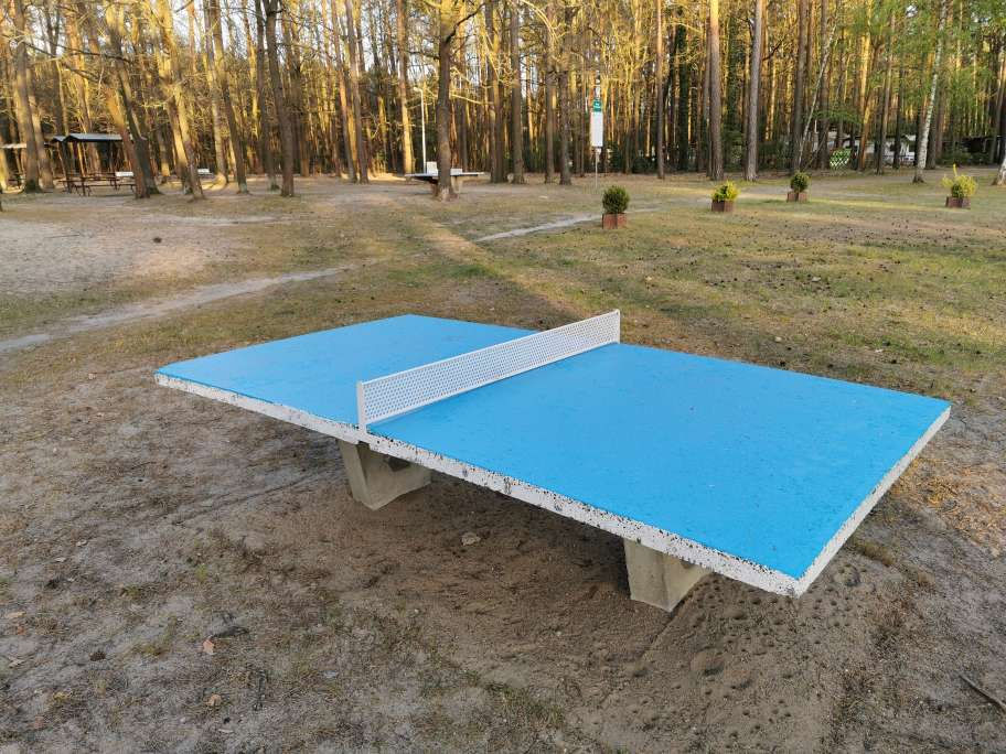 Ping und Pong spielen gern Chinesisch, Englisch oder Deutsch