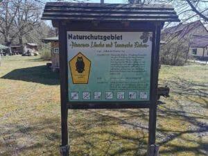 Wanderung Tauersche Eichen - Waldschule Kleinsee
